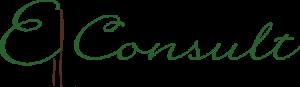 Asociatia E-consult